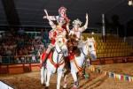 Конное экстрим-шоу Свадьба в Малиновке