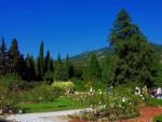 Краски Никитского сада