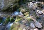 Горная река Бала