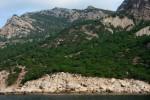 Заповедная растительность балаклавских берегов